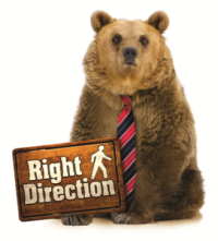 Right Direction bear